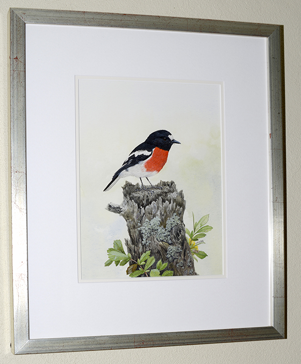 Scarlet Robin on the stump