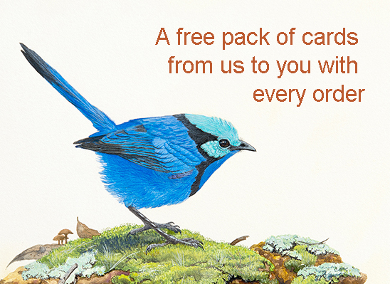 Free pack of cards